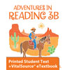 Reading 3B eTextbook & Printed ST (3rd ed.)