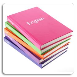 essay about professional development