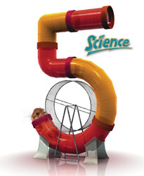 Science 5, 3rd ed. by BJU Press (textbook cover image)